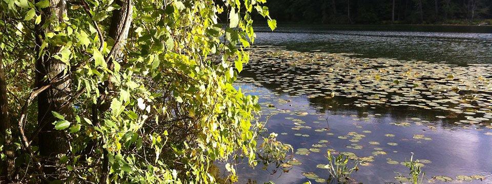 Blue Lake Township